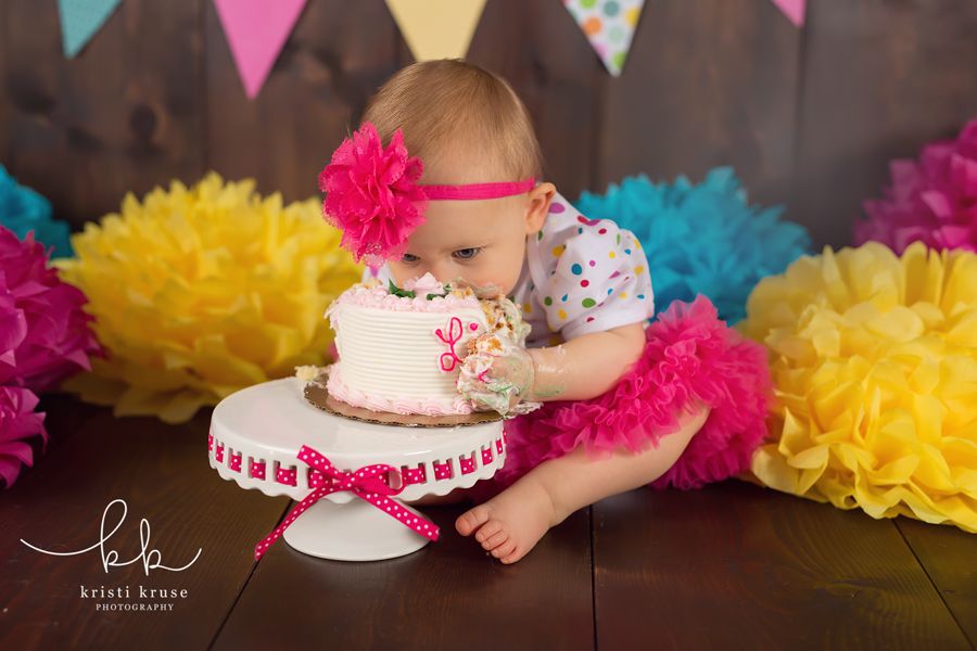 Raleigh first birthday photo session